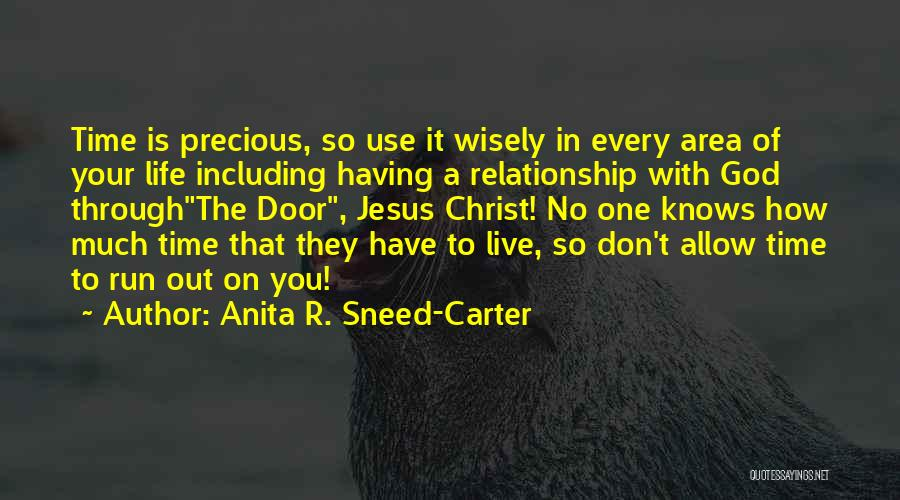 Having The Time Of Your Life Quotes By Anita R. Sneed-Carter