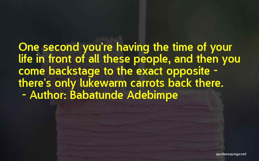 Having The Time Of Your Life Quotes By Babatunde Adebimpe