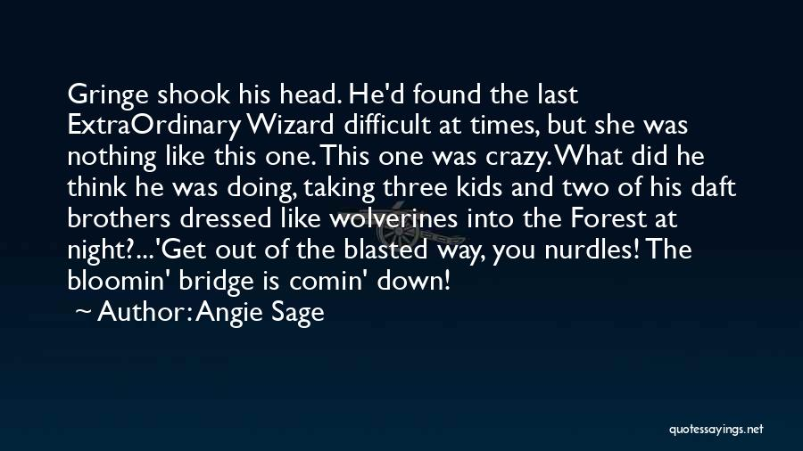 Having Two Brothers Quotes By Angie Sage