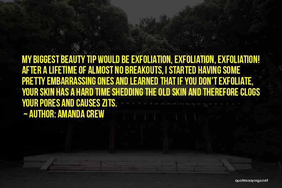 Having Your Time Quotes By Amanda Crew
