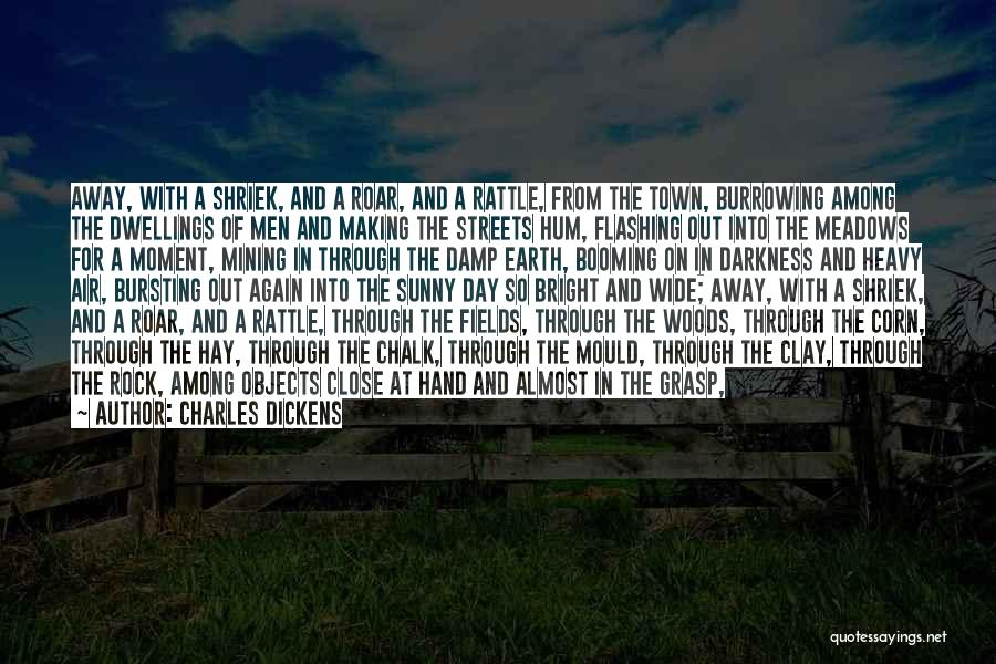 Hay Day Quotes By Charles Dickens