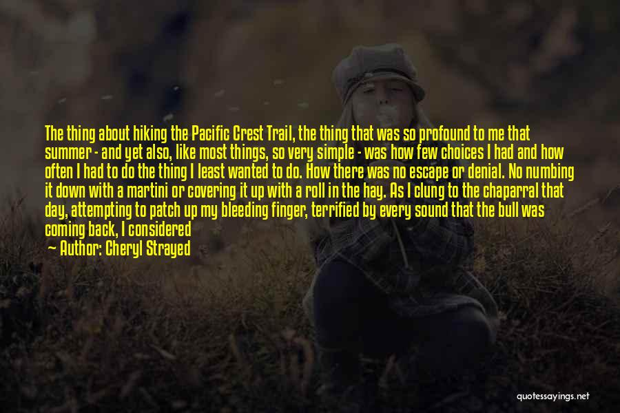 Hay Day Quotes By Cheryl Strayed