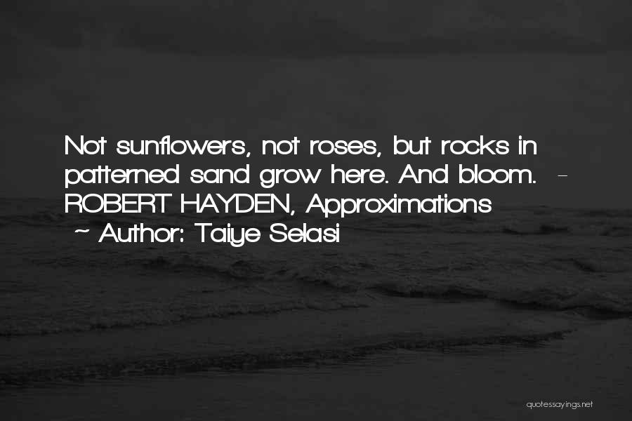 Hayden Quotes By Taiye Selasi