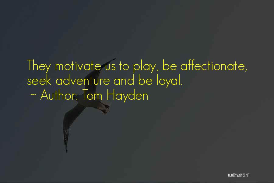 Hayden Quotes By Tom Hayden