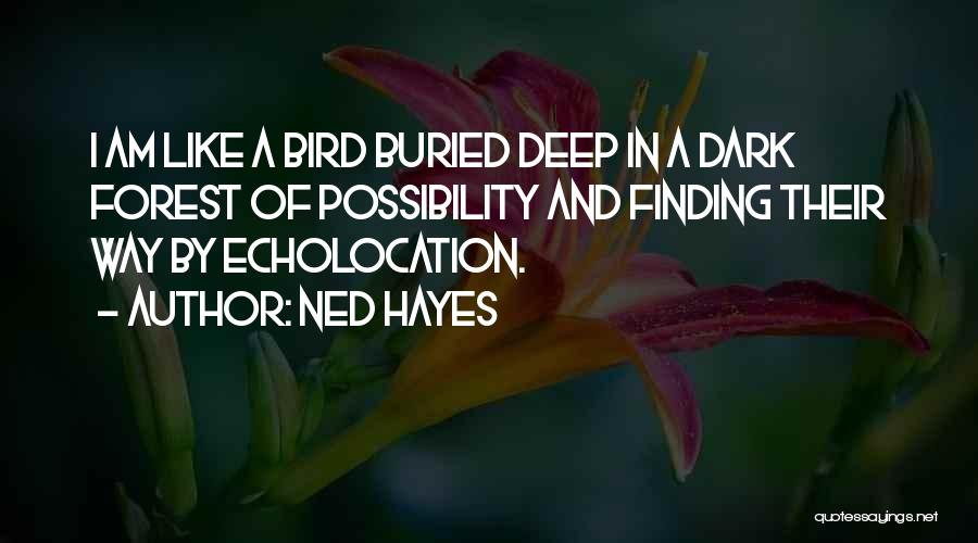 Hayes Quotes By Ned Hayes