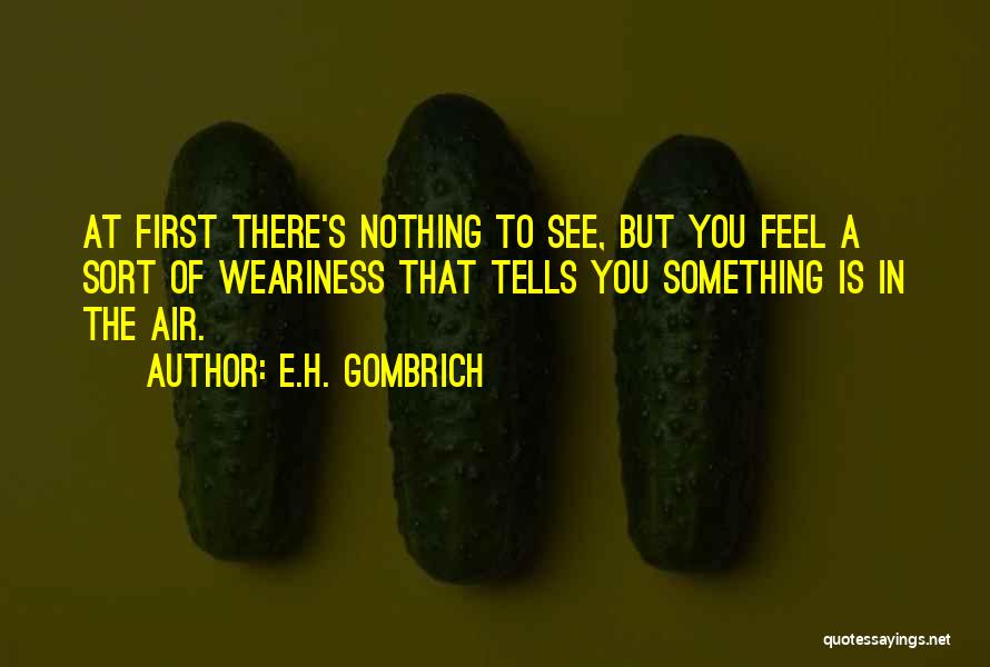 H'doubler Quotes By E.H. Gombrich
