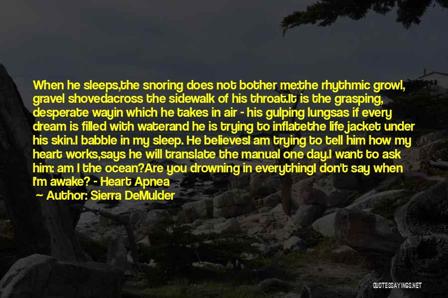 He Believes In Me Quotes By Sierra DeMulder
