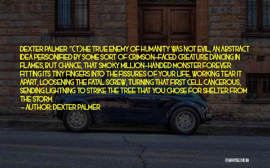 He Chose You Quotes By Dexter Palmer