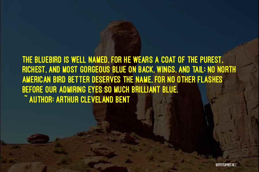 He Deserves Better Quotes By Arthur Cleveland Bent