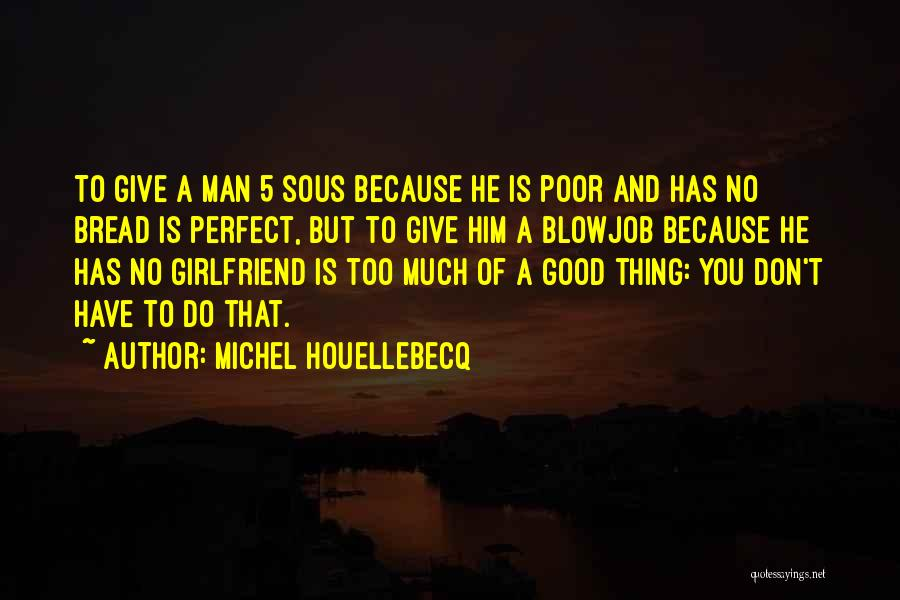 He Has Girlfriend Quotes By Michel Houellebecq