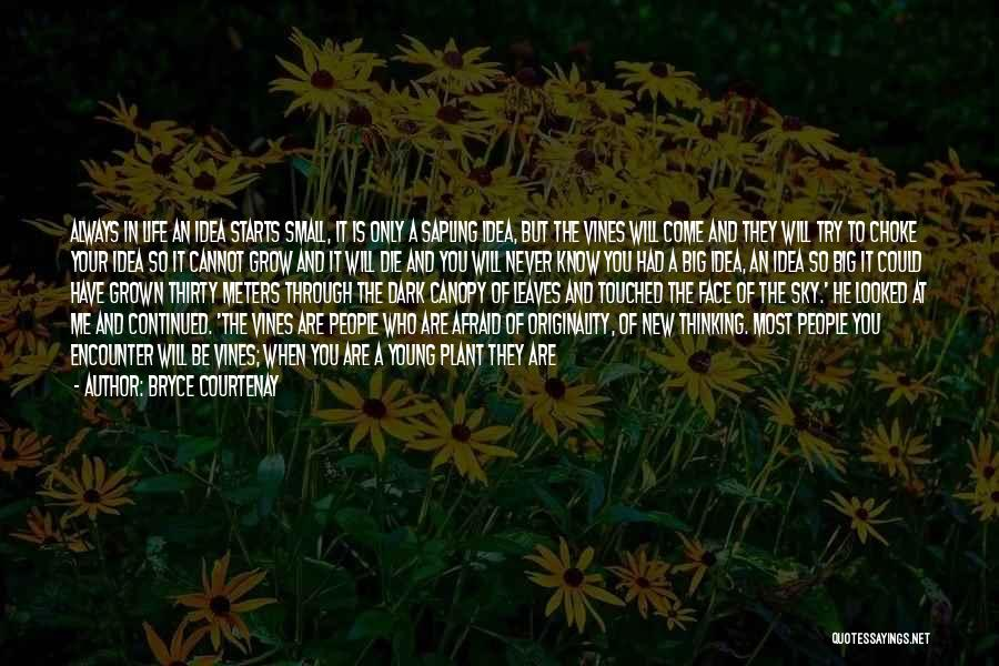 He Is Only Mine Quotes By Bryce Courtenay