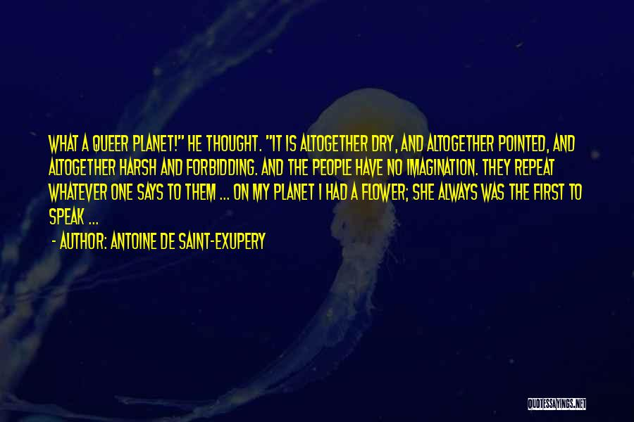 He She And It Quotes By Antoine De Saint-Exupery
