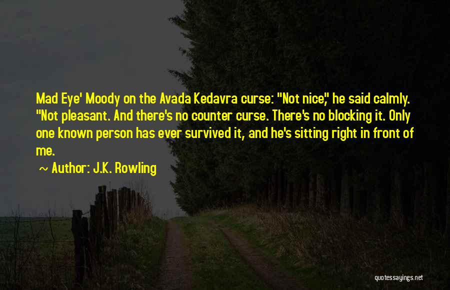 He Survived Quotes By J.K. Rowling