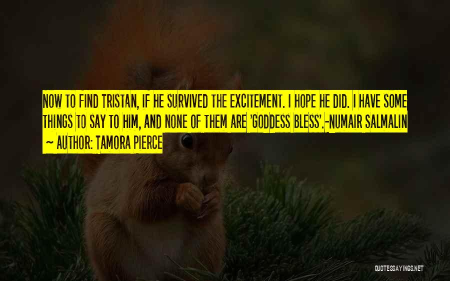He Survived Quotes By Tamora Pierce