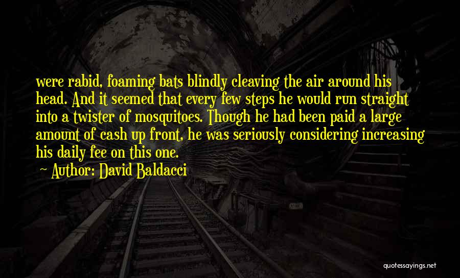 Head On Straight Quotes By David Baldacci