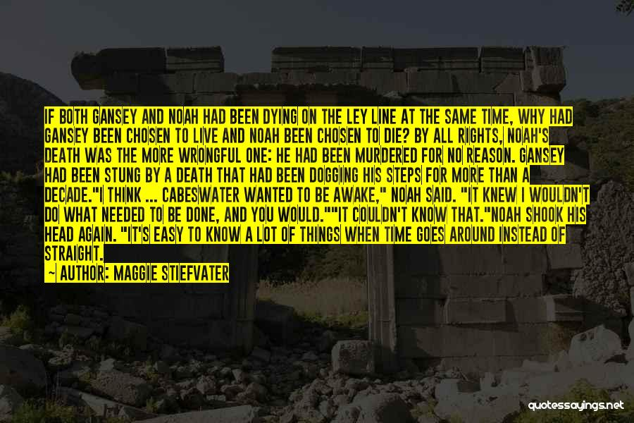 Head On Straight Quotes By Maggie Stiefvater