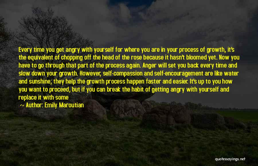 Head Up Quotes By Emily Maroutian