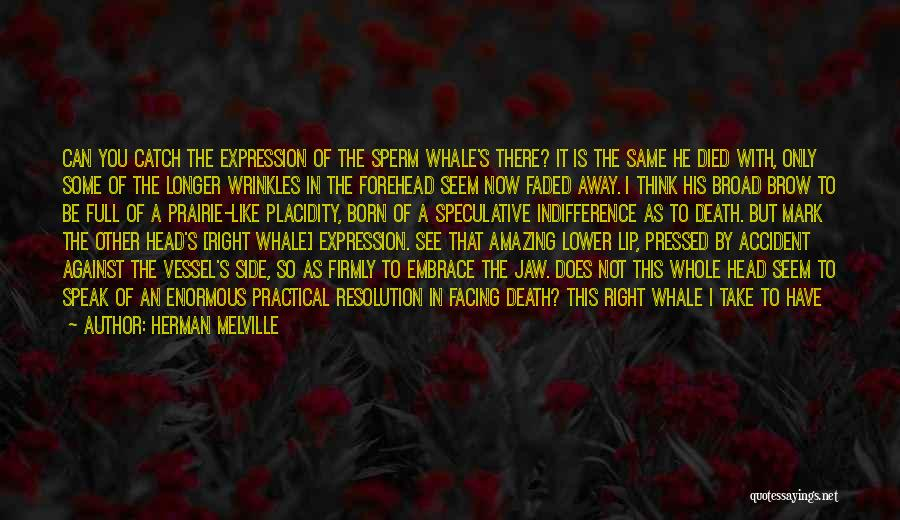 Head Up Quotes By Herman Melville