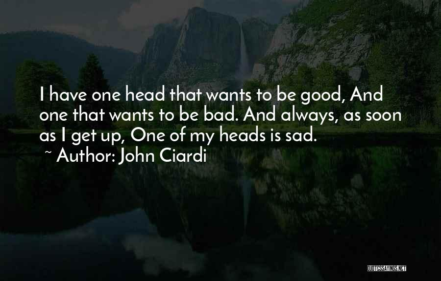 Head Up Quotes By John Ciardi