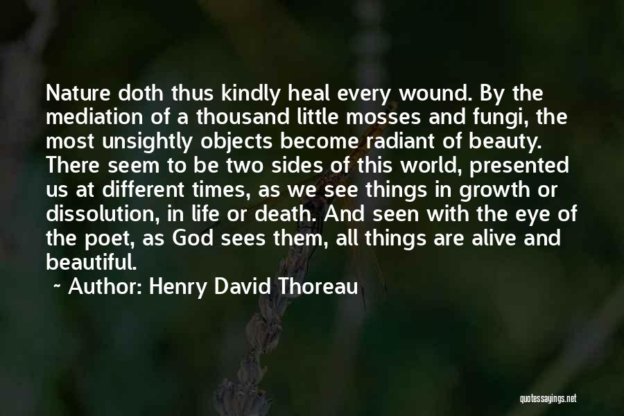 Heal The World Quotes By Henry David Thoreau