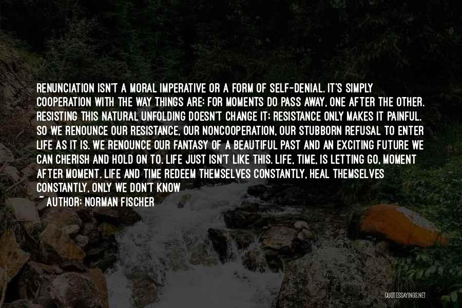 Heal The World Quotes By Norman Fischer