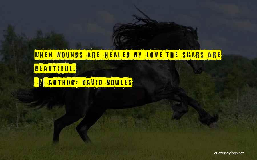 Healed Wounds Quotes By David Bowles