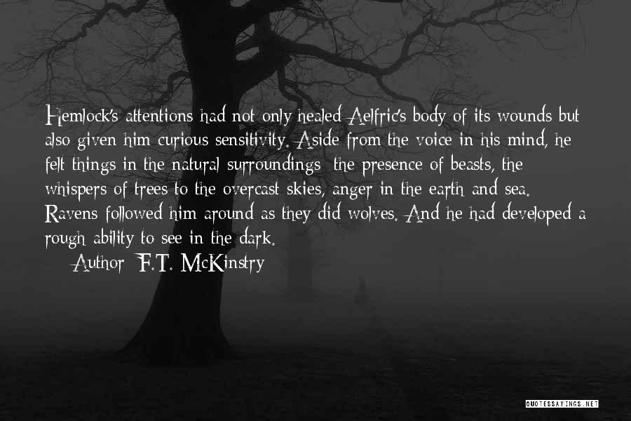 Healed Wounds Quotes By F.T. McKinstry