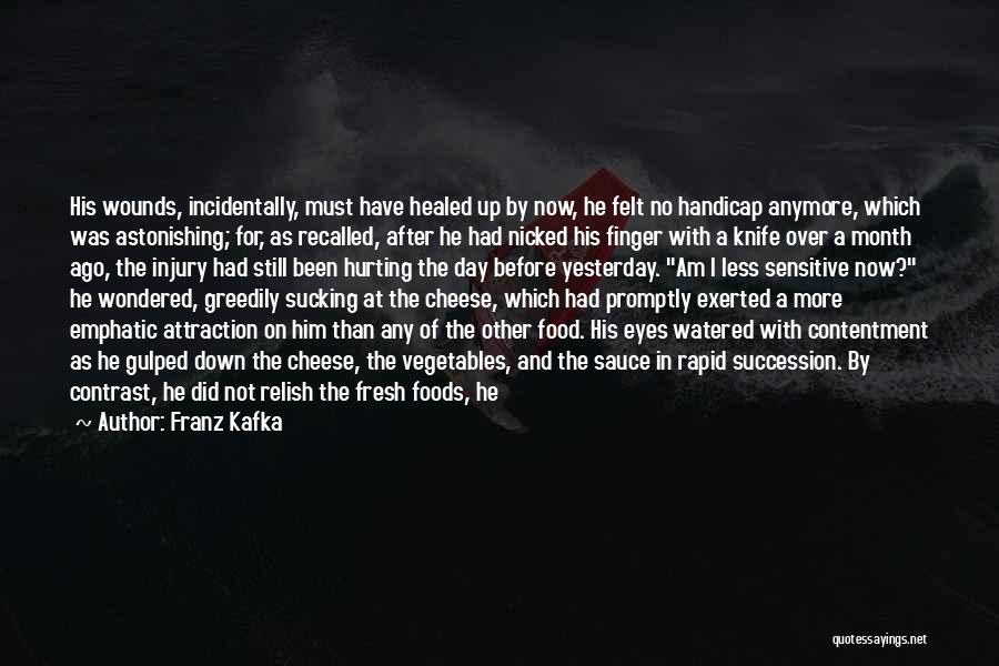Healed Wounds Quotes By Franz Kafka