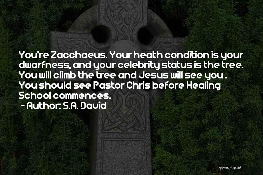Healing Quotes By S.A. David