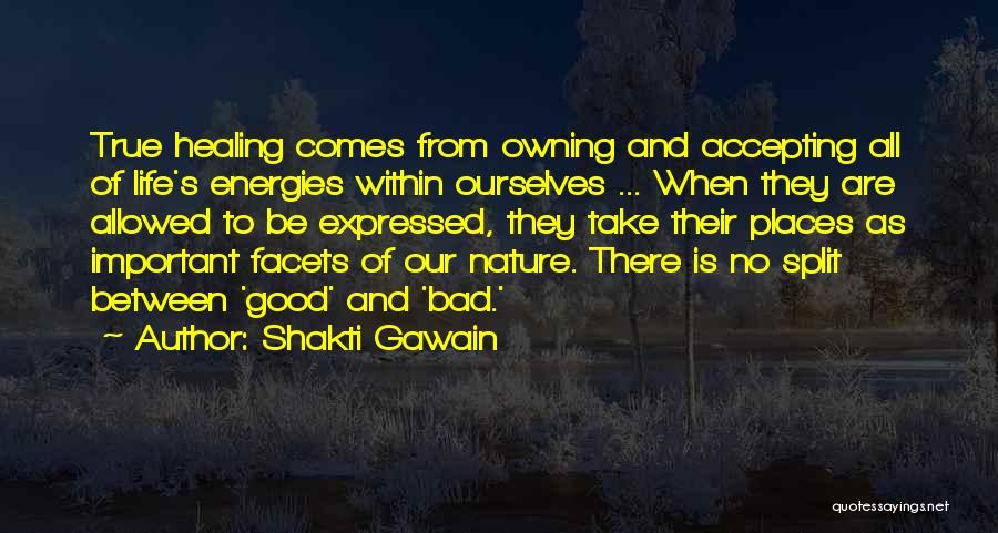 Healing Quotes By Shakti Gawain