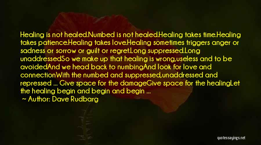 Healing Takes Time Quotes By Dave Rudbarg