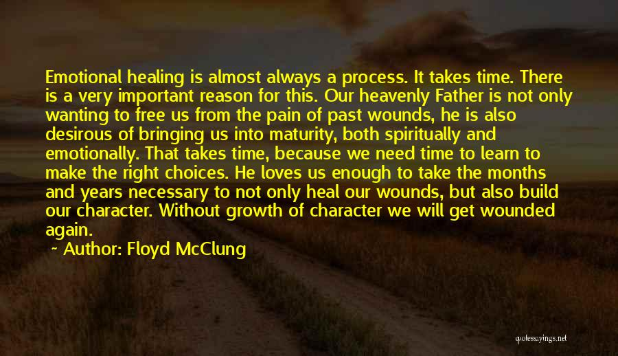 Healing Takes Time Quotes By Floyd McClung