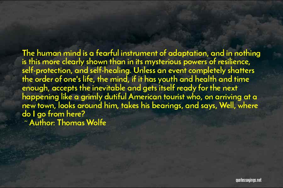 Healing Takes Time Quotes By Thomas Wolfe