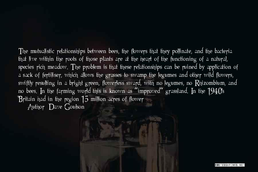 Heart Is Taken Quotes By Dave Goulson
