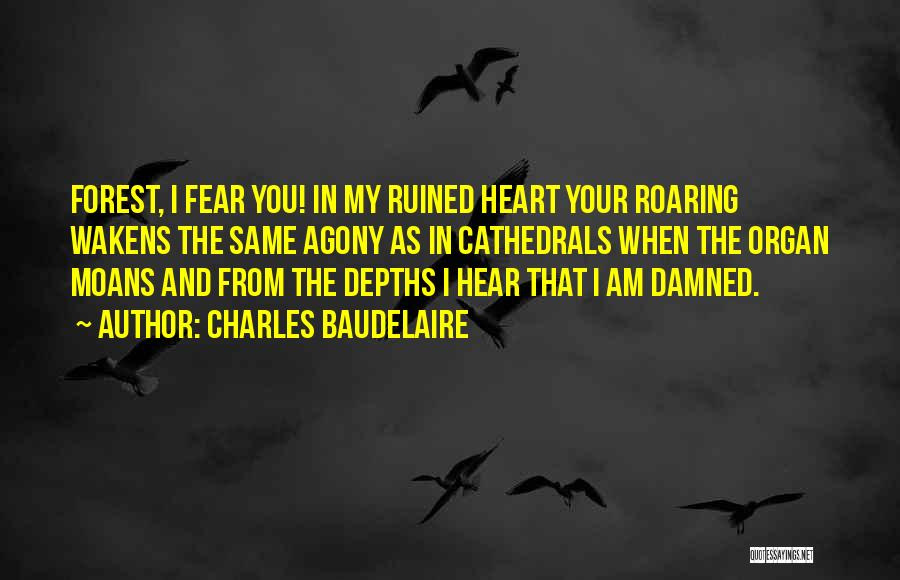 Heart Organ Quotes By Charles Baudelaire