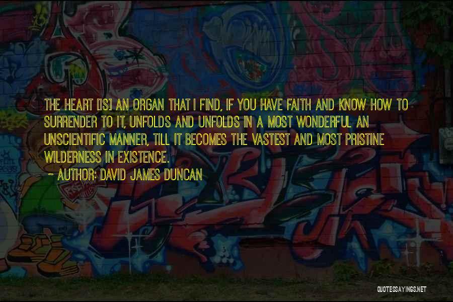 Heart Organ Quotes By David James Duncan