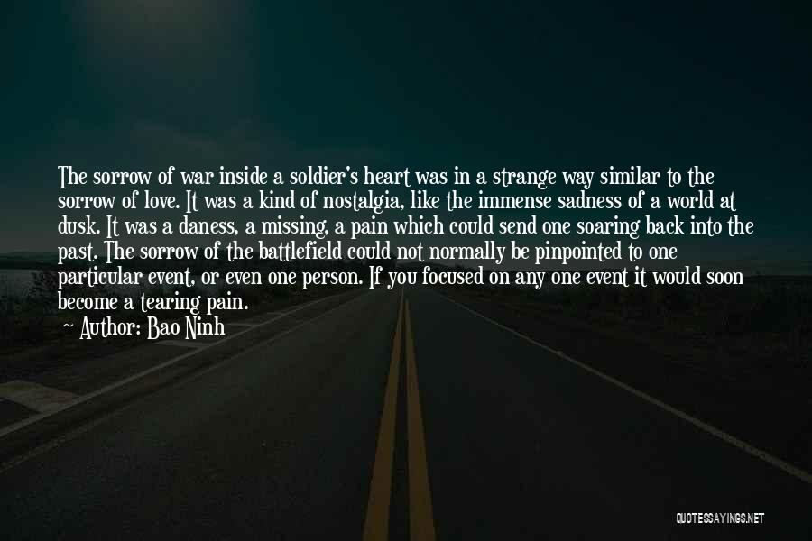 Heart Pain Quotes By Bao Ninh