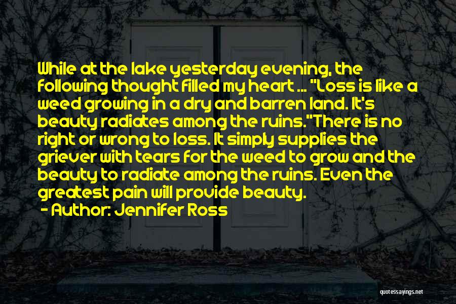 Heart Pain Quotes By Jennifer Ross