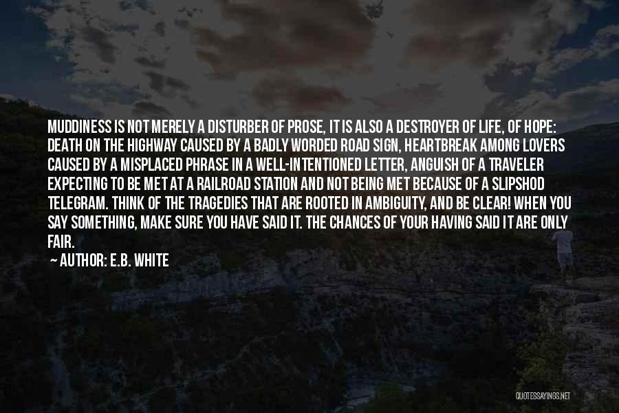 Heartbreak And Death Quotes By E.B. White
