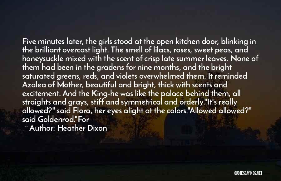 Heather Dixon Quotes 1838038