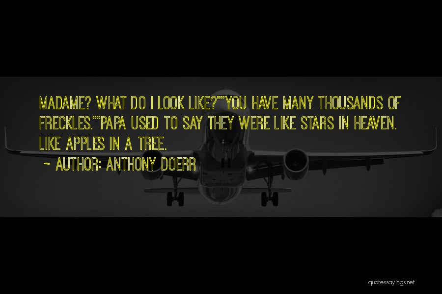 Heaven's Tree Quotes By Anthony Doerr