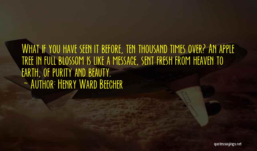 Heaven's Tree Quotes By Henry Ward Beecher