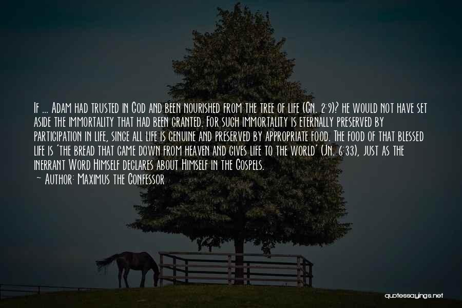 Heaven's Tree Quotes By Maximus The Confessor