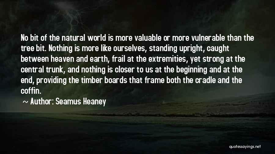 Heaven's Tree Quotes By Seamus Heaney