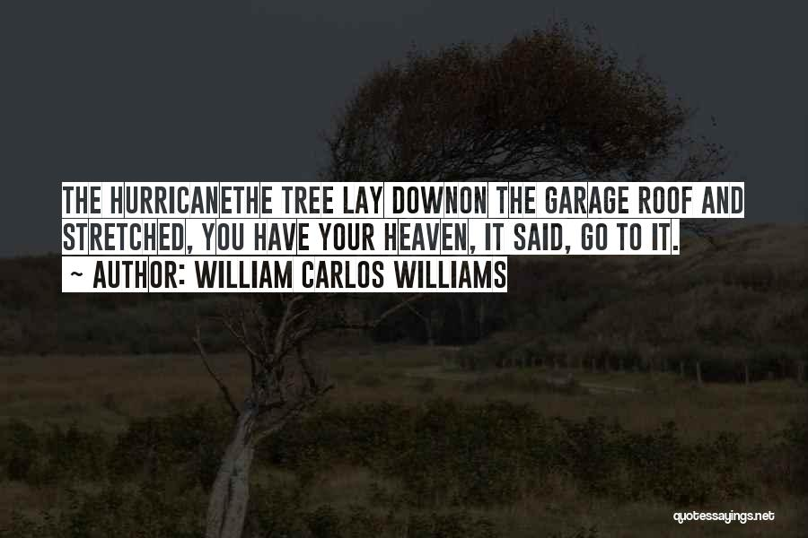 Heaven's Tree Quotes By William Carlos Williams