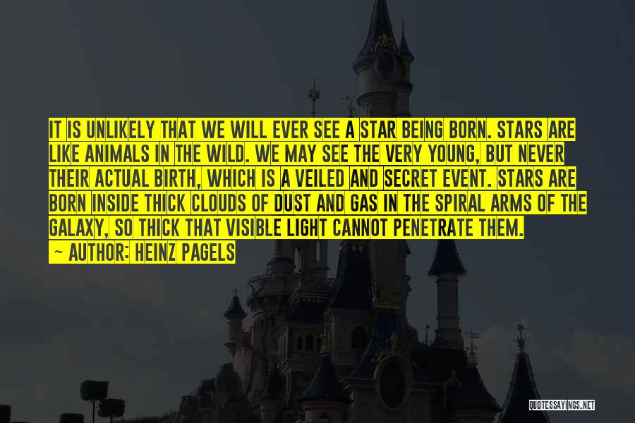 Heinz Pagels Quotes 985886