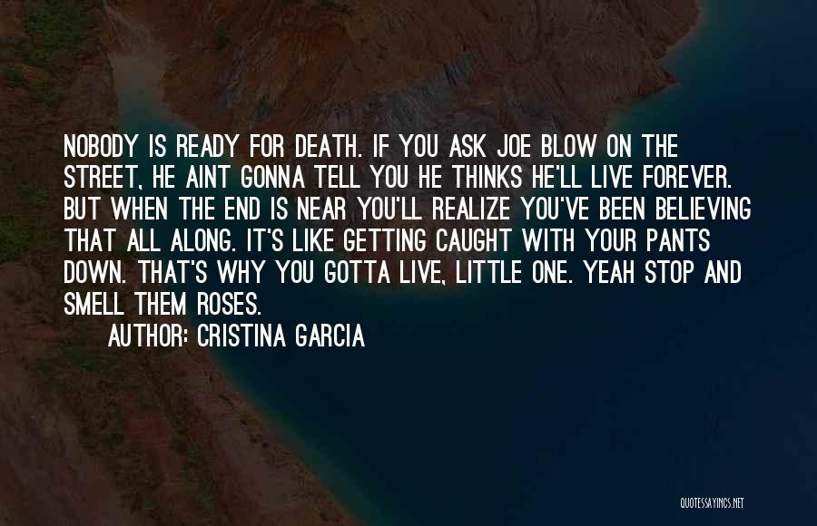 He'll Realize Quotes By Cristina Garcia
