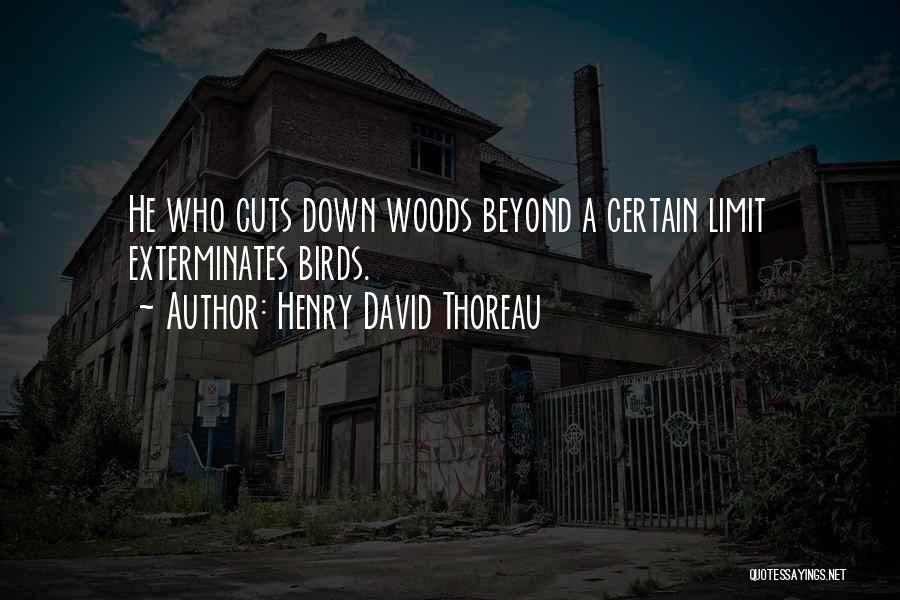 Henry David Thoreau Quotes 1040891