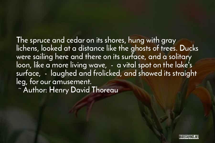 Henry David Thoreau Quotes 1497161