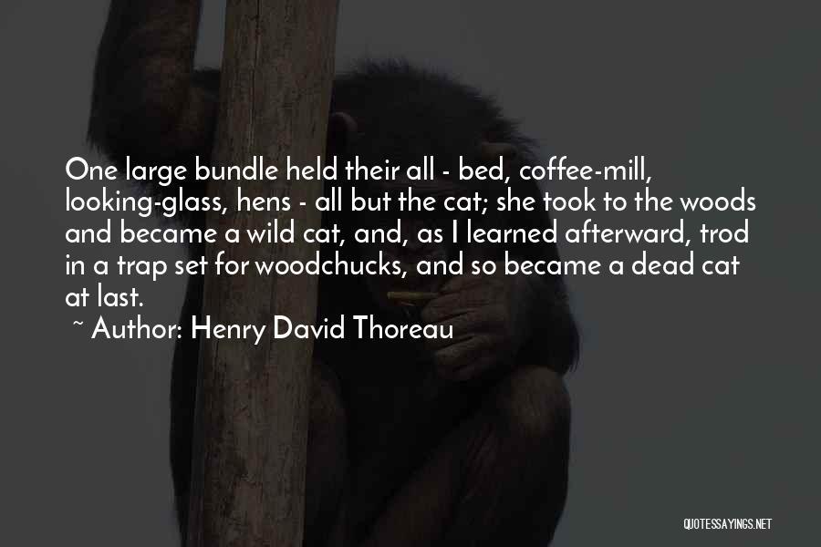 Henry David Thoreau Quotes 1785429